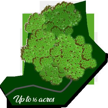 Acreage Outline.fw-2